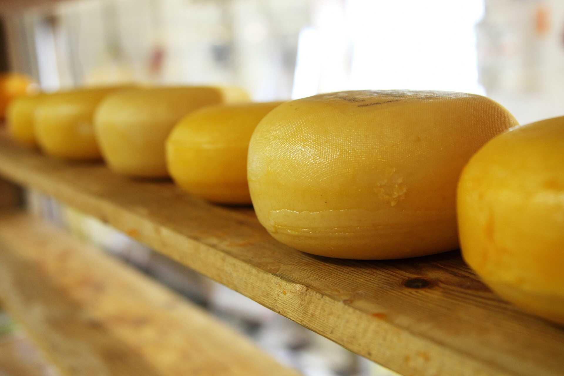 Queso, quesos, proteínas, glutamato. Foto: Pixabay
