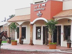teotihuacán. restaurante y bar-Los-escamoles-Hotel-hacienda-teoticamp