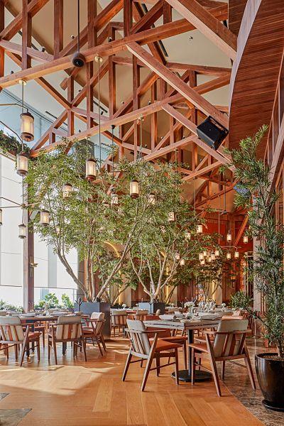 restaurante sylvestre