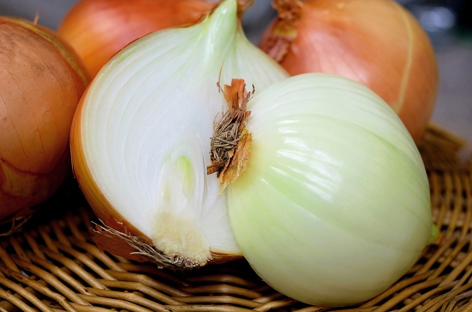 los fitonutrientes y la salud